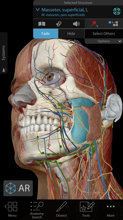 Human Anatomy Atlas 2019 screenshot-0