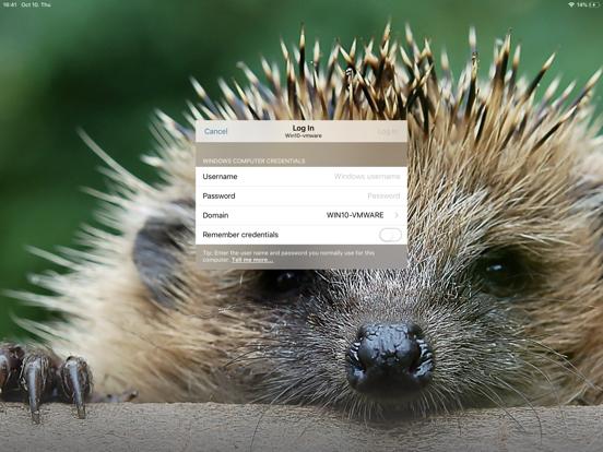 LogMeIn iPad app afbeelding 3