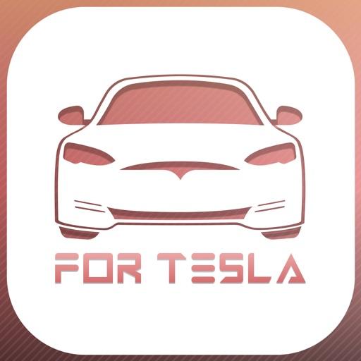 Remote Car App for Tesla