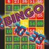 Bingo callout - iPhoneアプリ