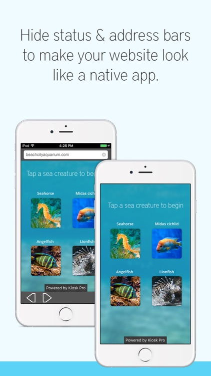 Kiosk Pro Lite screenshot-3