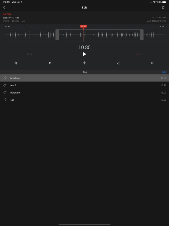 AVR X PRO - Voice Recorder Screenshots