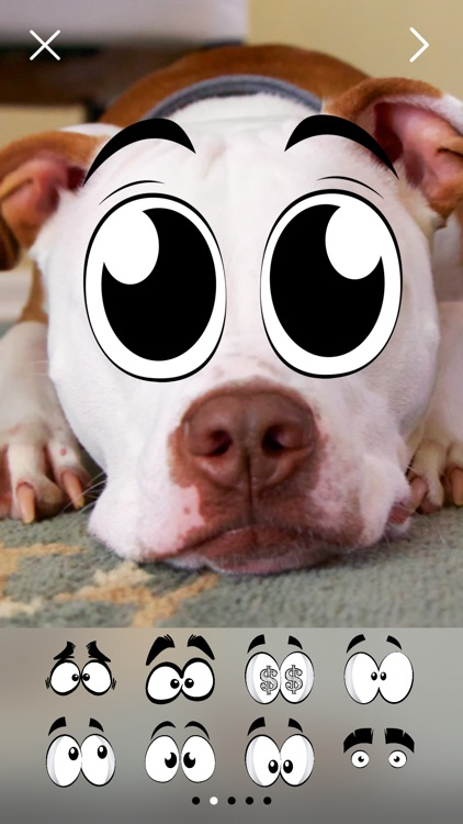 Crazy Eyes Fun Photo Stickers screenshot-4