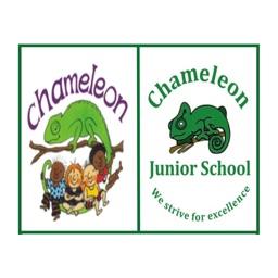 Chameleon Schools