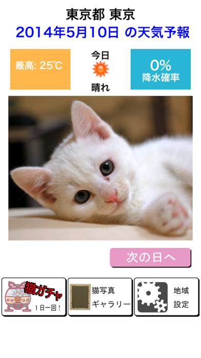 猫天気〜天気予報&可愛い猫写真〜のおすすめ画像1