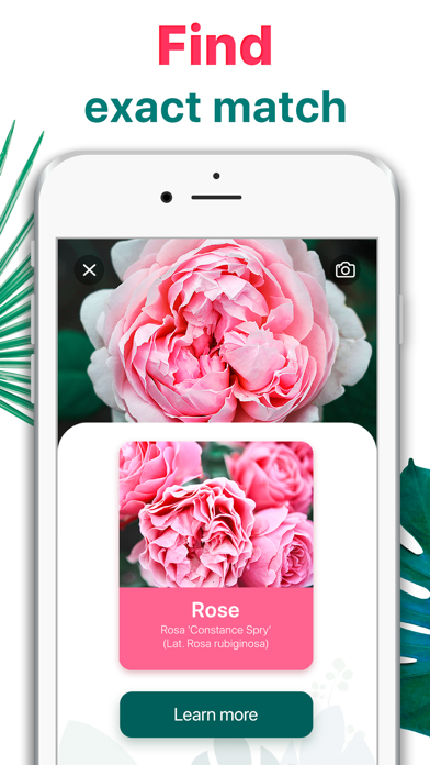Plant Identifier - Leaf Snap screenshot 2