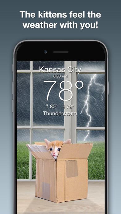 Weather Kitty: Forecast & Cats Screenshot