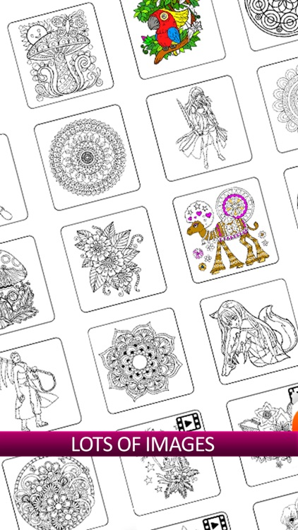 Color By Number: Coloring Fun