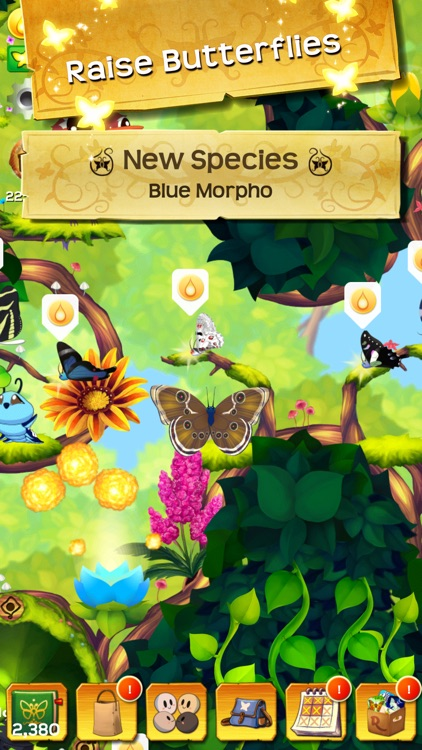 Flutter: Butterfly Sanctuary screenshot-4