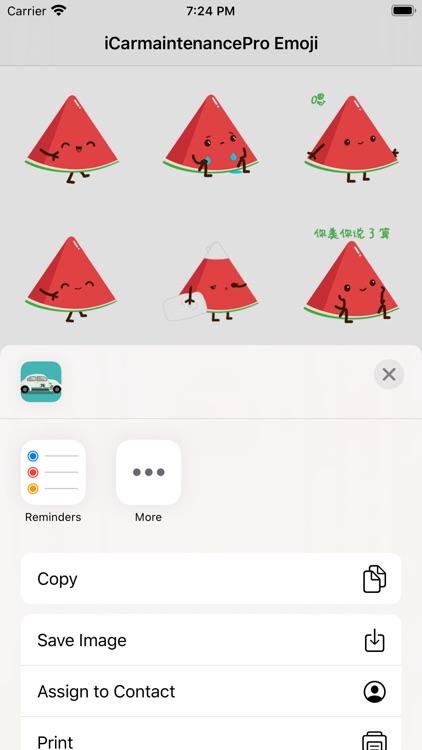 iCarmaintenancePro-Funny Emoji