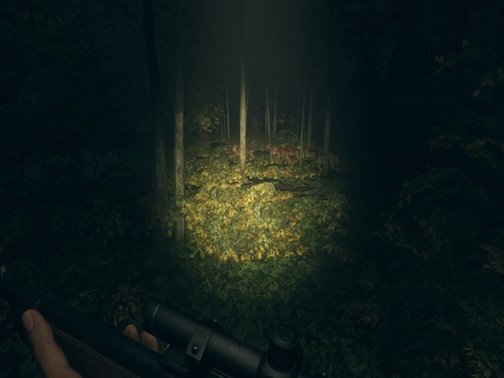 HUNTER 2019 screenshot 15