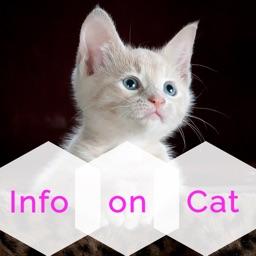 Info On CAT