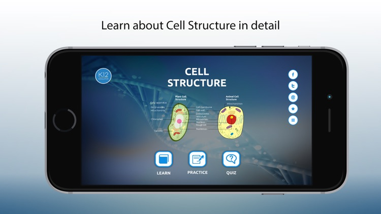 Biology Cell Structure