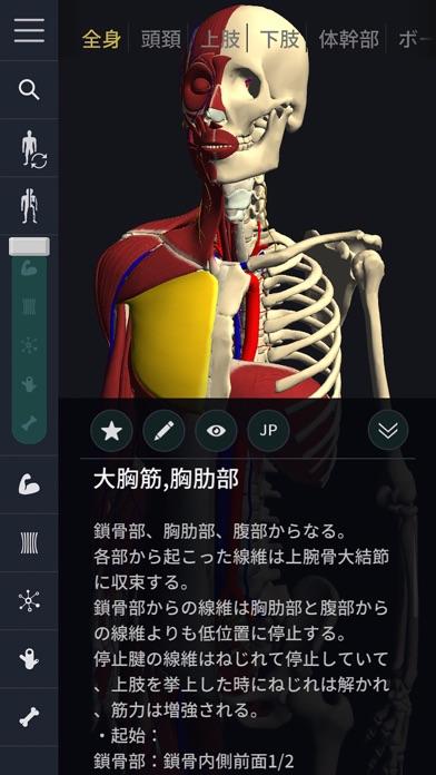 3D運動解剖学 teamLabBody ScreenShot3