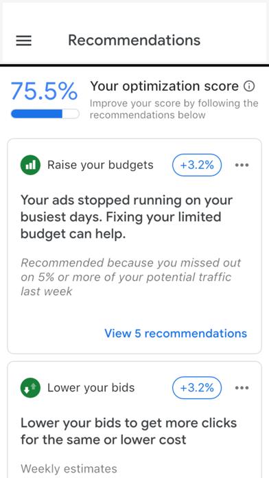 Google Ads: Grow Your Business Screenshot