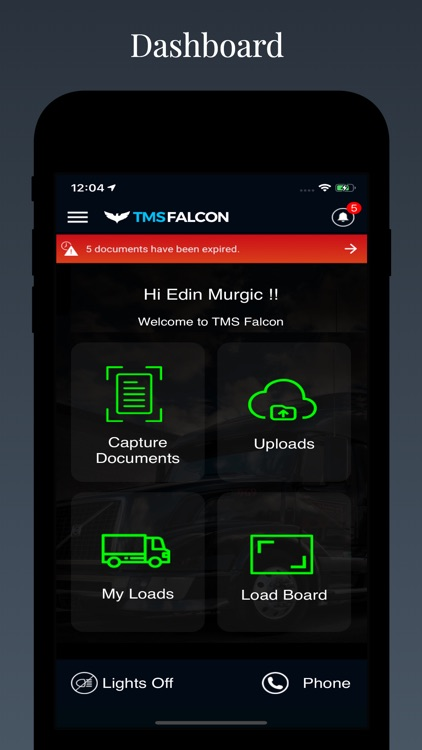 Tmsfalcon screenshot-0