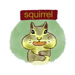 Squirrel all day