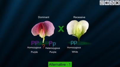 Test Cross: pea flower screenshot 2