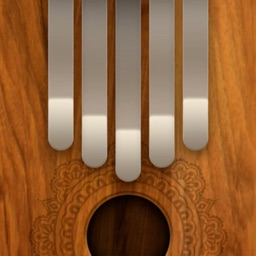 Mediation Kalimba