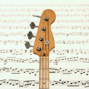 Bass Guitar Notes PRO  App Reviews, Download