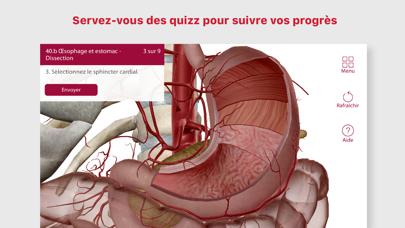 Anatomie & Physiologie