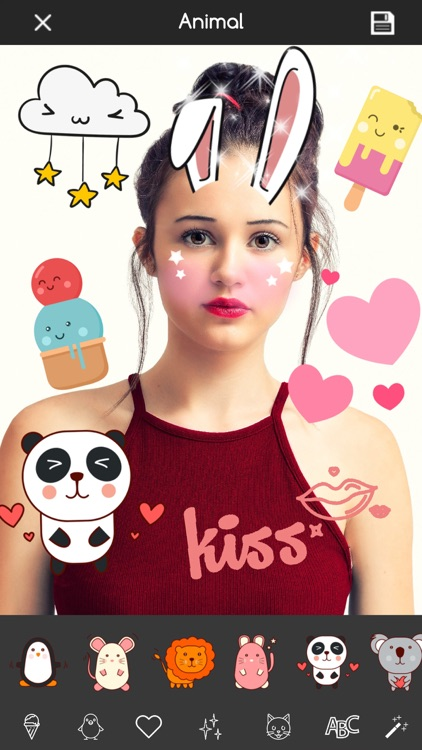 Kawaii Photo Editor Stickers