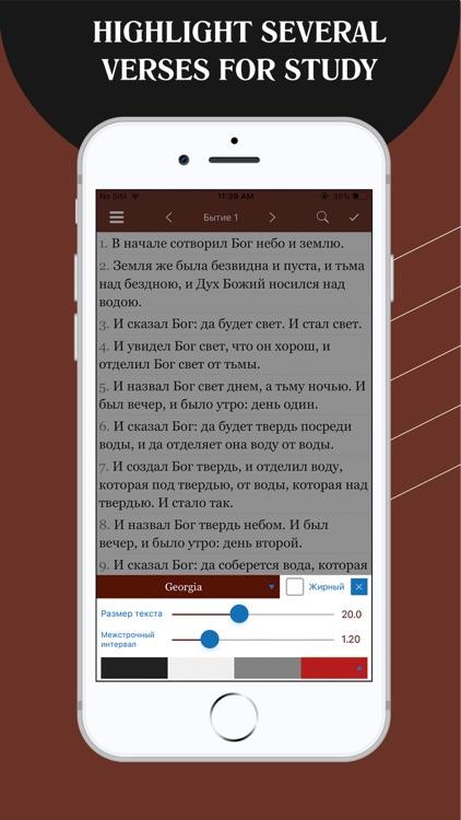 Russian Bible - Библия screenshot-6