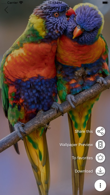 Wallpaper hd and backgrounds screenshot-5