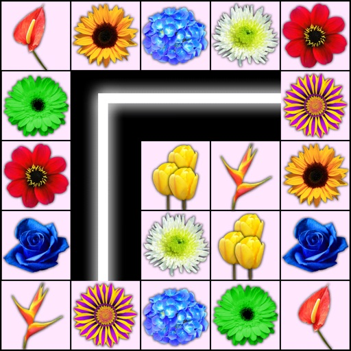 Onnect Flowers Match Puzzle