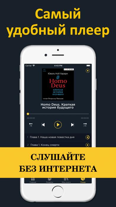 Аудиокниги бесплатно для iPhone и iPad скачать бесплатно ...