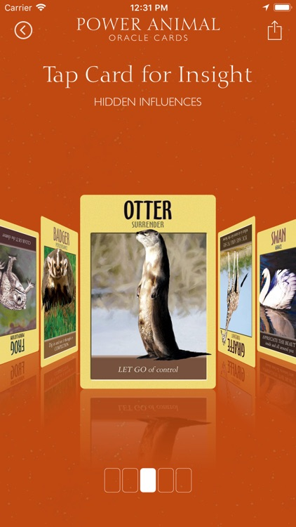 Power Animal Oracle Cards