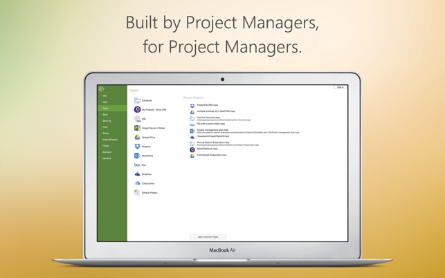 ms office project viewer