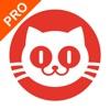 猫眼专业版-电影票房影人合作