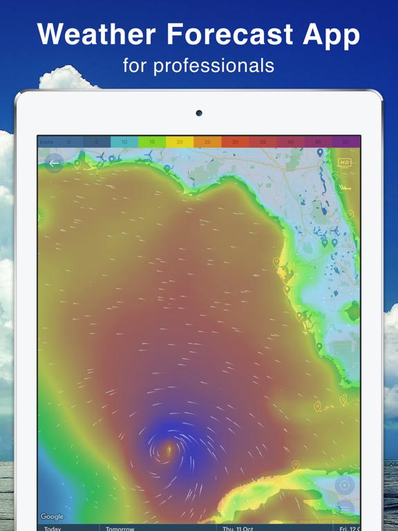 Windy: wind & waves forecast