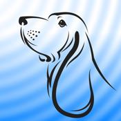 Blue Hound icon