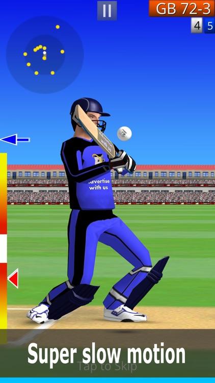 Smashing Cricket: Play Real 3D