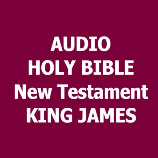 Audio Bible New Testament