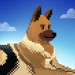 Dog Shelter Rescue