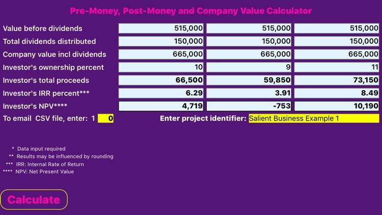 Company Valuation Calculator screenshot-3