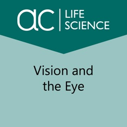 Vision and the Eye