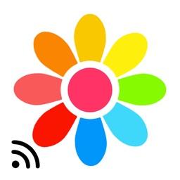Allcast TV for Google Photos