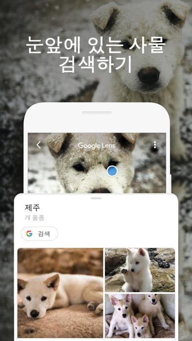 Screenshot for Google in Korea App Store