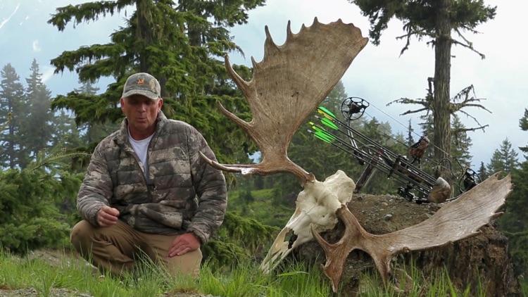 Moose Hunter screenshot-7