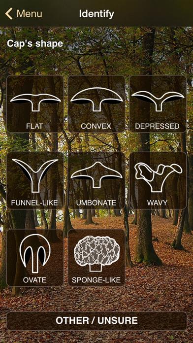 iFunch - Mushrooms and AIのおすすめ画像2