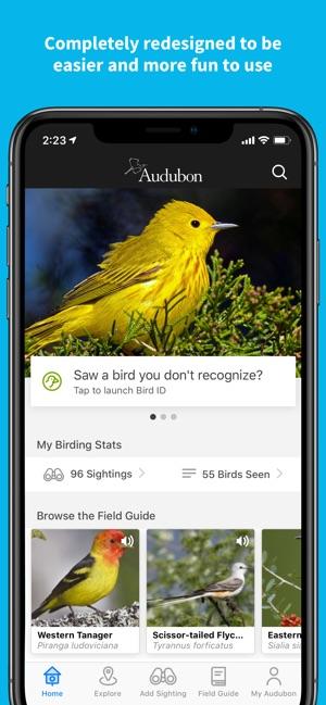 Audubon Bird Guide on the App Store
