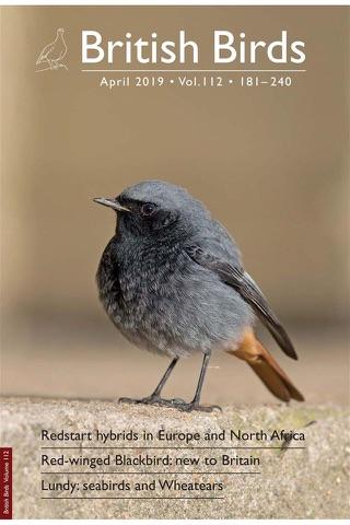 British Birds Magazine - náhled
