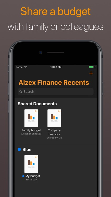 Alzex Finance - Family budget