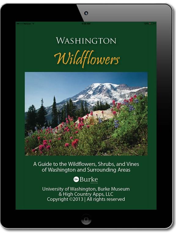Washington Wildflowers screenshot