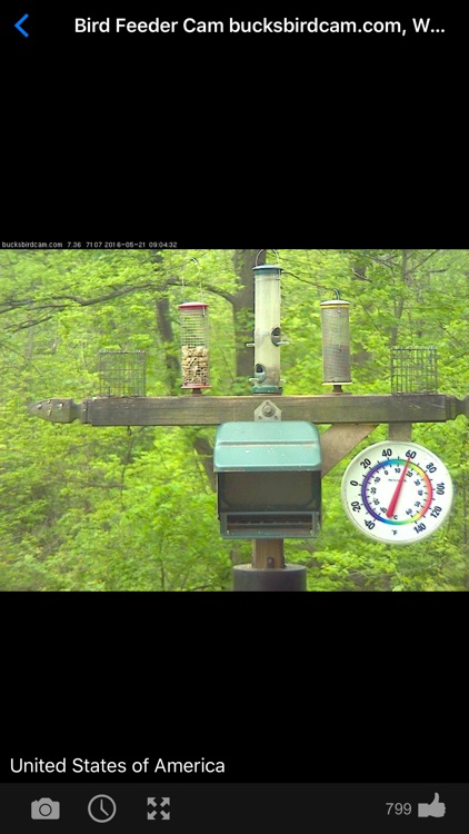 Web Camera Online: Live Cams screenshot-3