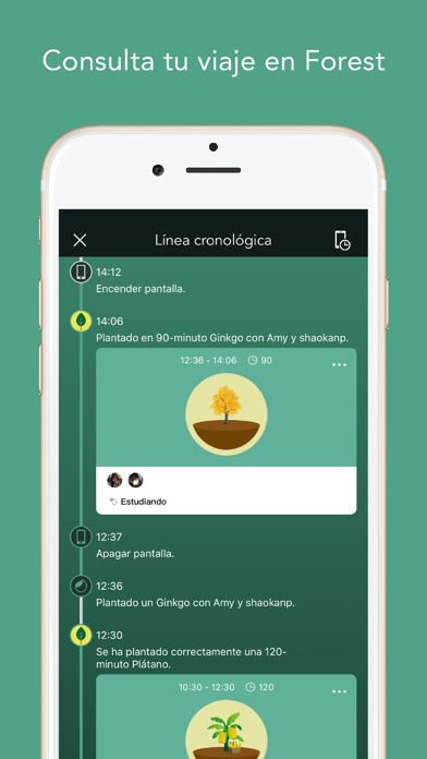 download Forest apps 6